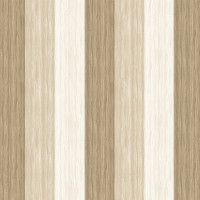 The View From HereWoodgrain Strip - White Wash - Product Image