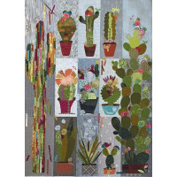 Collage Cactus Sampler - Product Image