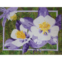 Colorful Columbines - Product Image