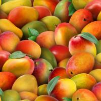 Food Festival - Mango - Product Image