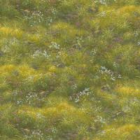 Noah's Ark - Grass - Product Image
