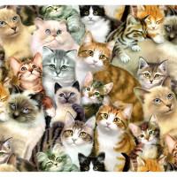 Petpourri - Cats - Product Image