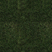 Naturescapes Moss - Product Image