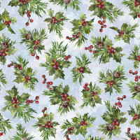 Winter WonderSnowy Holly - Product Image